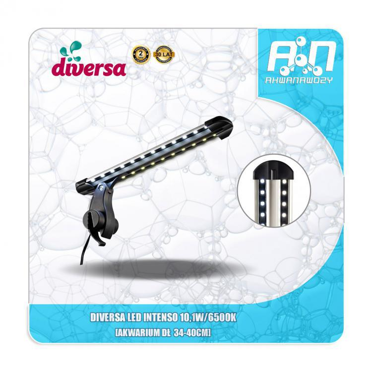 DIVERSA LED INTENSO 10,1W 34-40CM